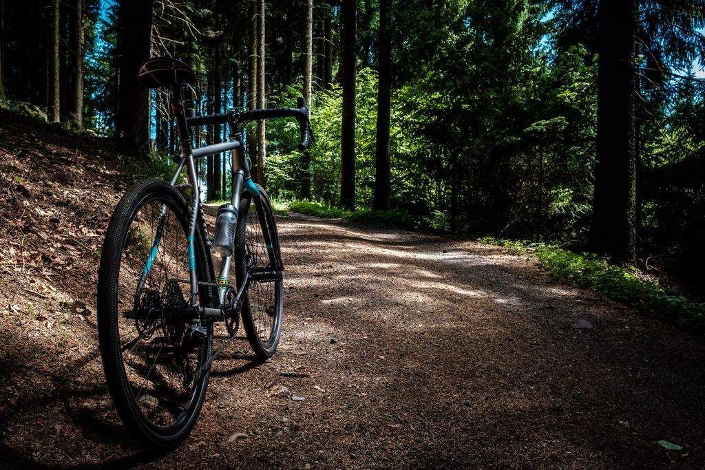 Tips (en routes!) om te mountainbiken op de Veluwe