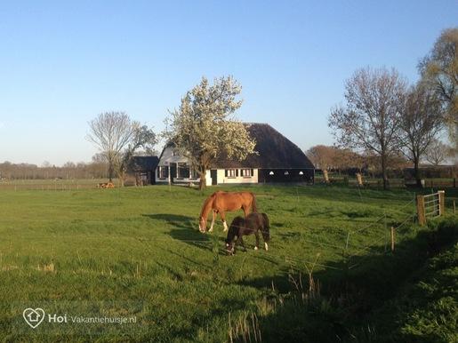 Vakantiehuis in Wezep voor max. 8 personen